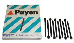 Болты ГБЦ (комплект) Payen (США) Chery Amulet 480-1003082/Payen